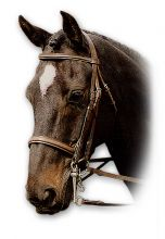 Sabre Hunter Double (Weymouth) Bridle
